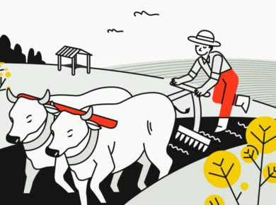 China market research: agricultural areas users base