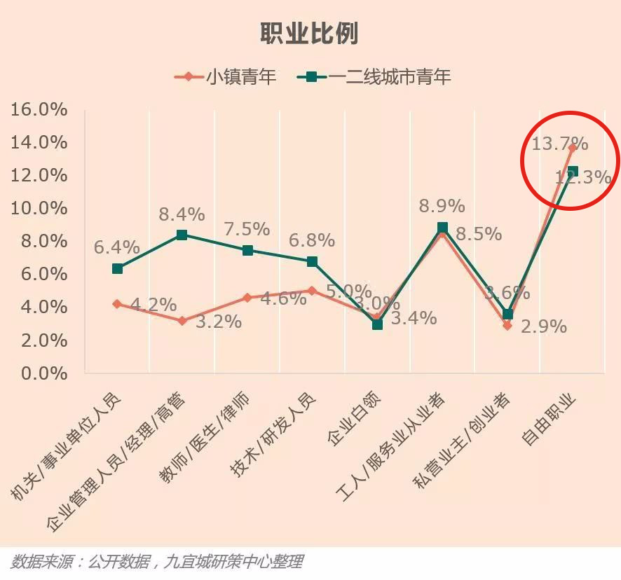 Chinese consumer behavior: Chinese rural youth freelancing